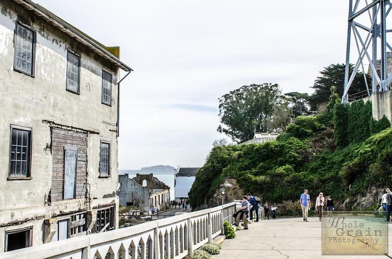 20141016_Alcatraz_0065.jpg