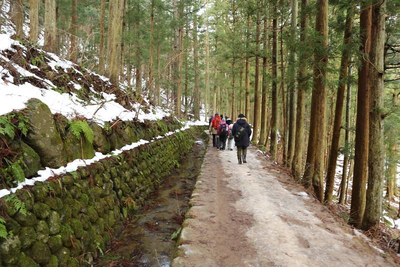 The lovely walk back through the Jigokudani Monkey Forest