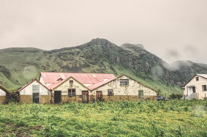 Iceland_Heather 4263.jpg