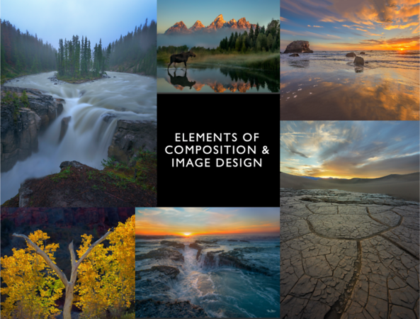 Essential Elements of Composition & Image Design