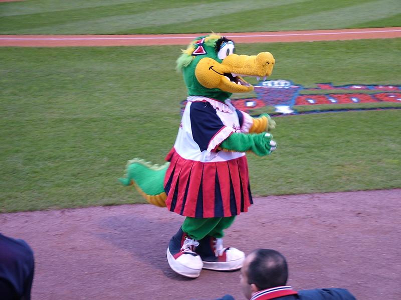 Alligator - one of Lowell Spinner's Mascot