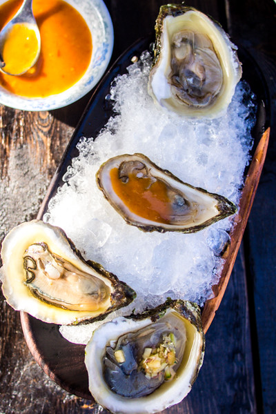 oysters on ice 2.jpg