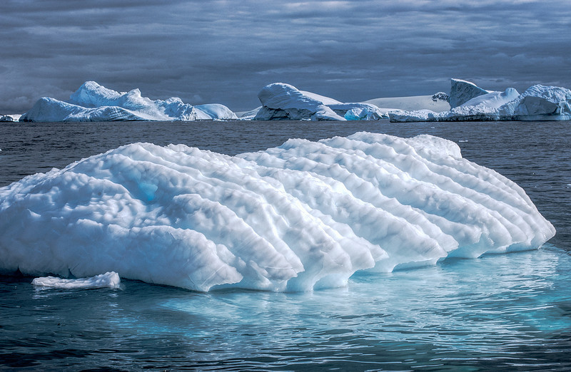 ice at cuverville 4-Edit.JPG