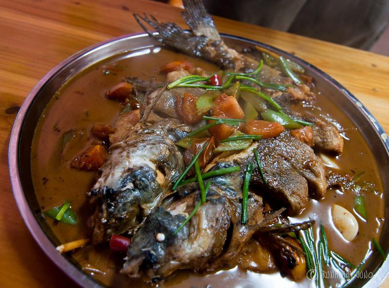 Orange-Beerfish Yangshuo Guangxi China.jpg