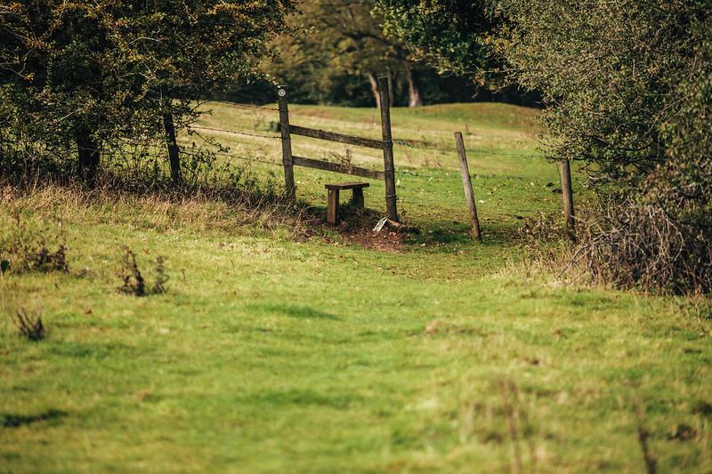 Nancy Florence - 08-10-2019 - Broxbourne - Edited -217.jpg