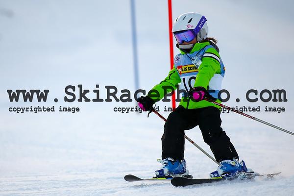 Ski Stars Race 2