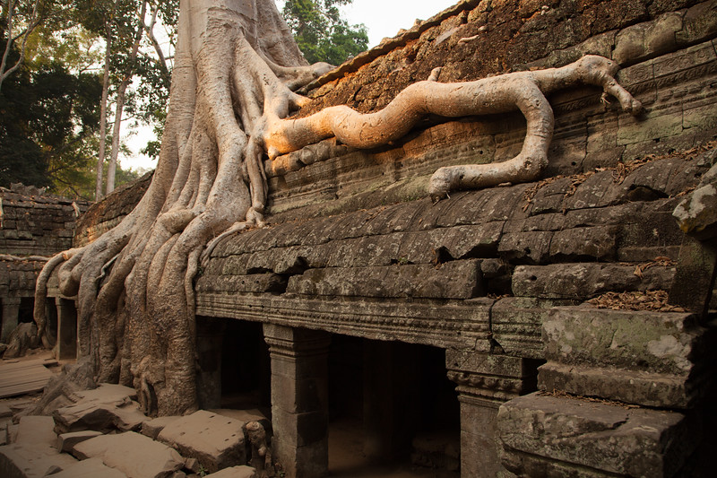 Cambodia-0919.jpg