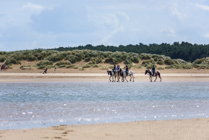 Holkham Beach Ride August 2019 (18).jpg