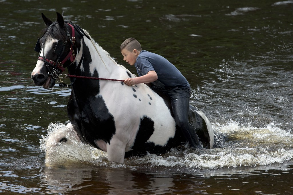 . A boy washes a horse in the River Eden on the opening day of the annual Appleby Horse Fair, in the town of Appleby-in-Westmorland, North West England on June 4, 2015. The annual event attracts thousands of travelers from across Britain to gather and buy and sell horses. AFP PHOTO / OLI SCARFF/AFP/Getty Images