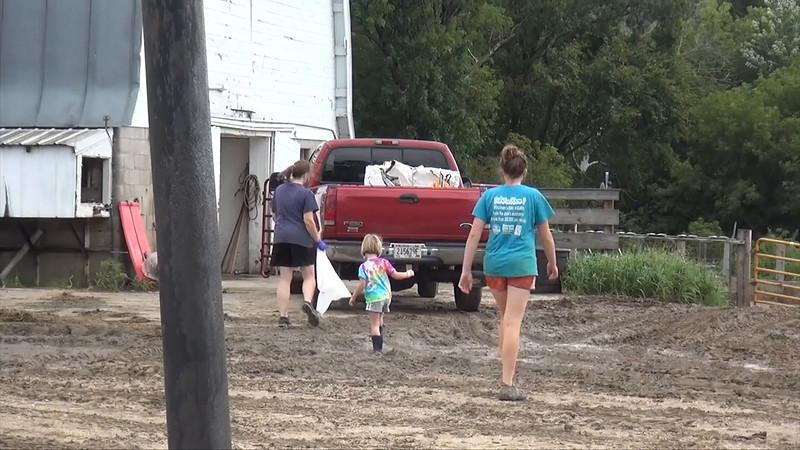 Lexie at farm, August 13th, 2016