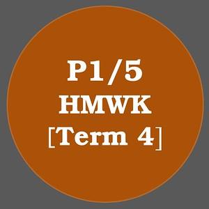 P1/5 HMWK T4
