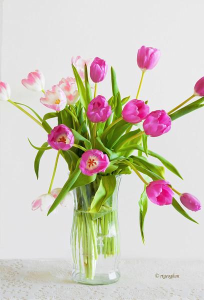 Mar 25 _Tulips in Vase_0554.jpg
