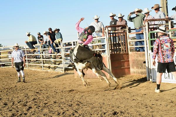 Mini Bull Riding 7/18