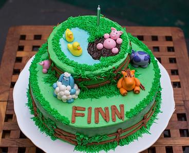 Finn's first birthday