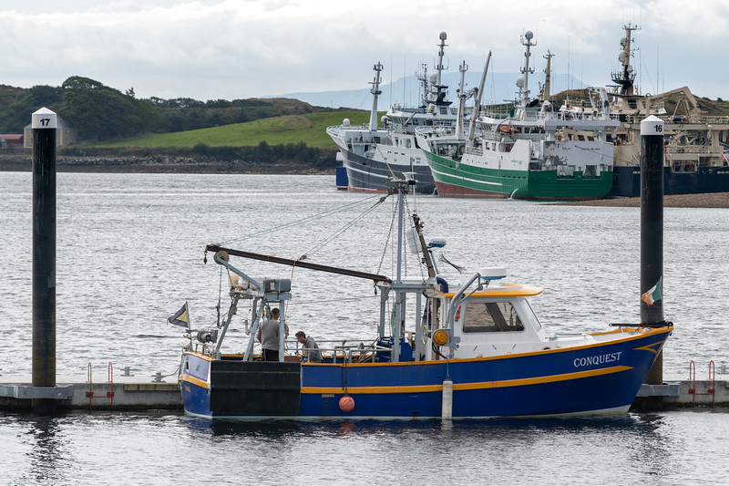 Boats at harbor, Killybegs, County Donegal, Republic of Ireland