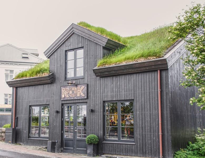Iceland 2884.jpg
