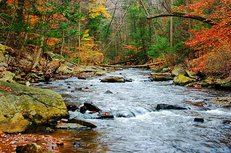Upstream (2).jpg