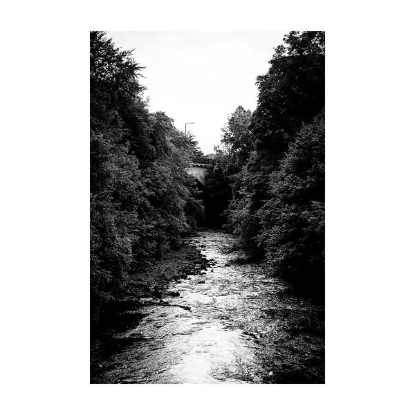 240_RiverAllan_10x10.jpg