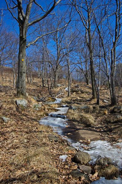 Buck Mountain 1.jpg