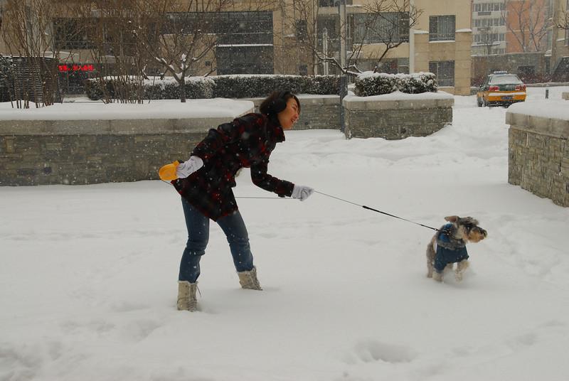 [20100103] 1st 2010 Snow in Beijing (9).JPG
