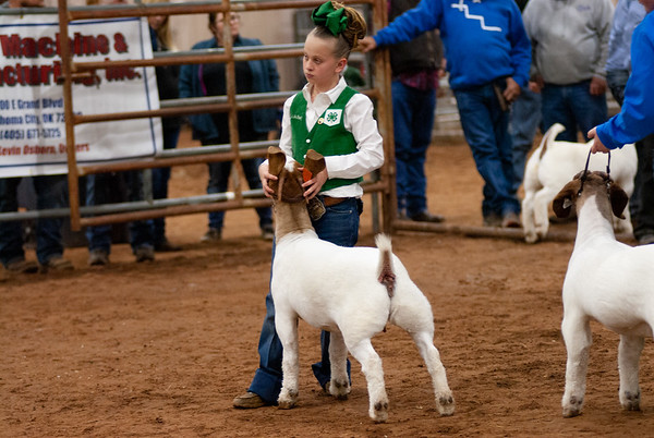 Central Area Goat Show
