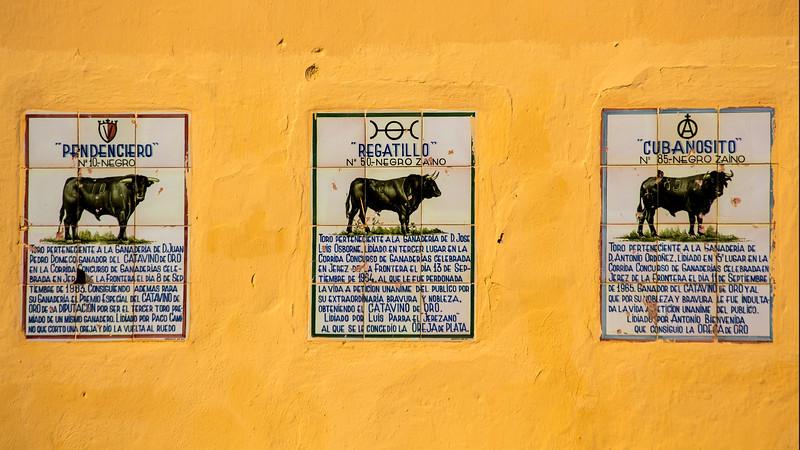 Bullfighting H19.jpg