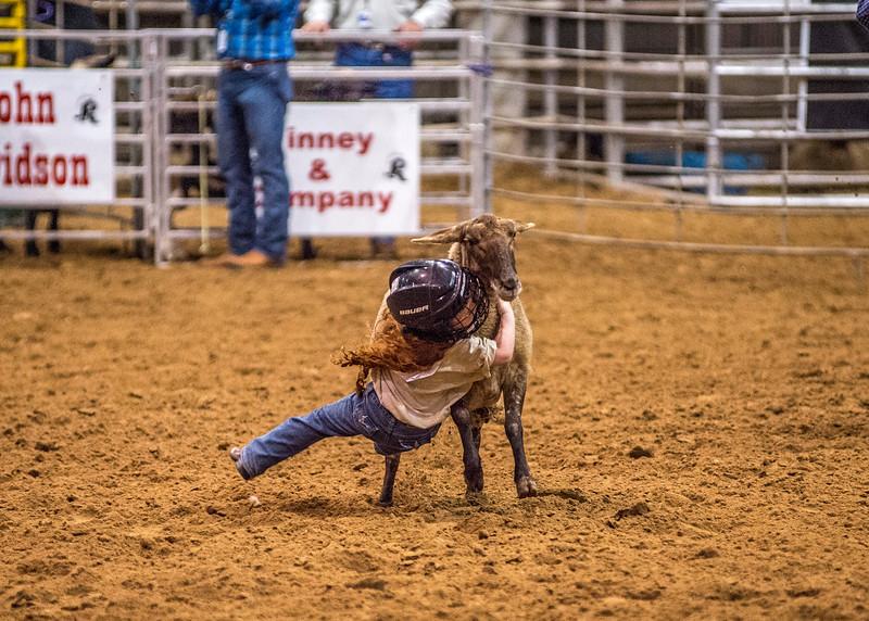 Rodeo_541.jpg