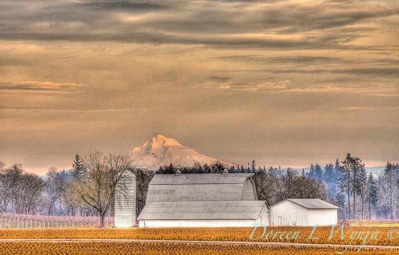 Hood's White Barn_9894.jpg
