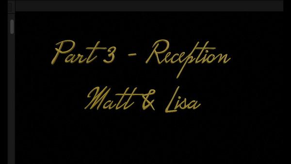 Part 3 - Reception -- Matt & Lisa ~~ 12 minutes