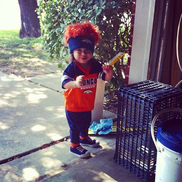 . Dallas Cowboy\'s Who? Houston, what? I\'m from Texas and I LOVE my Denver Broncos!