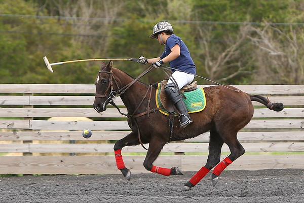 20190413 ExPat Polo Georgetown vs GW at Congressional Polo Club