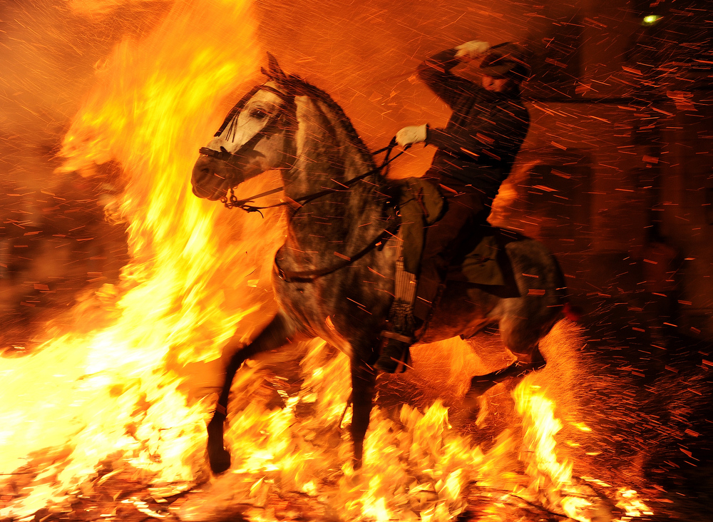 Description of . A man rides a horse through a bonfire on January 16, 2012 in the small village of San Bartolome de Pinares, Spain. In honor of San Anton, the patron saint of animals, horses are riden through the bonfires on the night before the official day of honoring animals in Spain.  (Photo by Jasper Juinen/Getty Images)