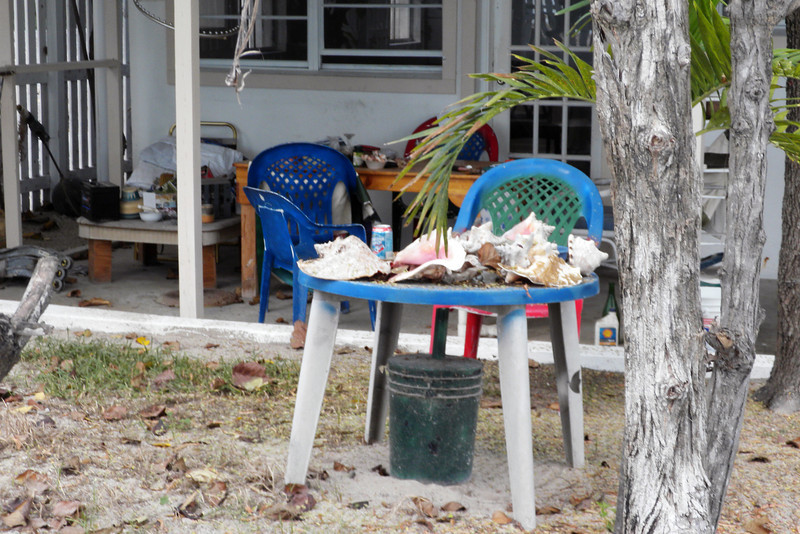 Back yard of historical homes along Front Street in Grand Turk