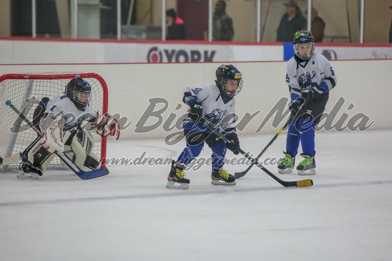 Blizzard Hockey 111719 8024.jpg