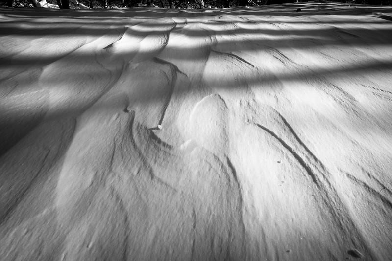 Winter scenes-4.jpg