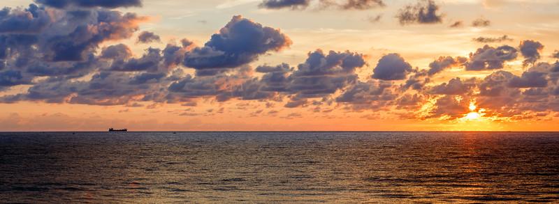 Lantana Sunrise
