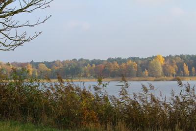 2012_11_11_VVN_Wandeling_Bussloo