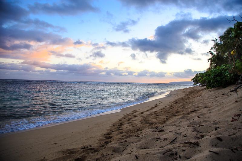 Hawaii-North Shore 2017-9165.jpg