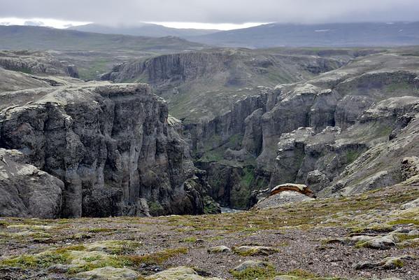 1. dagur - gengið í gegnum skóginn
