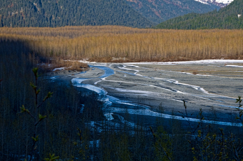 The walk back to Exit Glacier takes you along this beautiful valley.