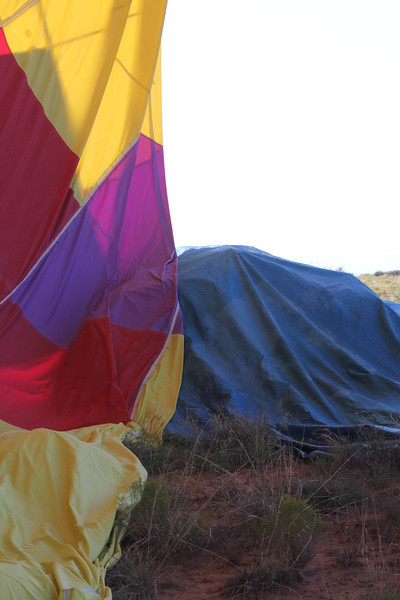 covering the cactii with a tarp for the take down so the balloon won't get torn
