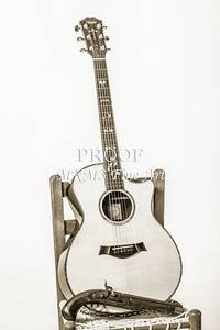 Guitar Art Photographs in Black and White Taylor 914C