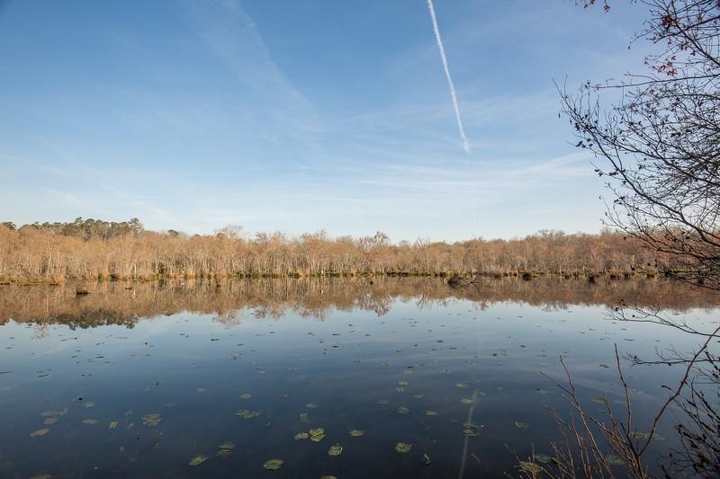 Apalachee River Timberlands_-6.jpg