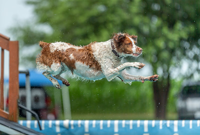 Splash 3