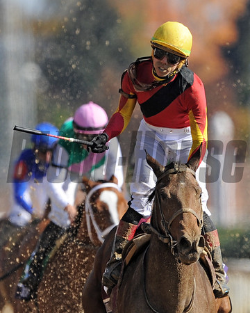 Filly & Mare Sprint