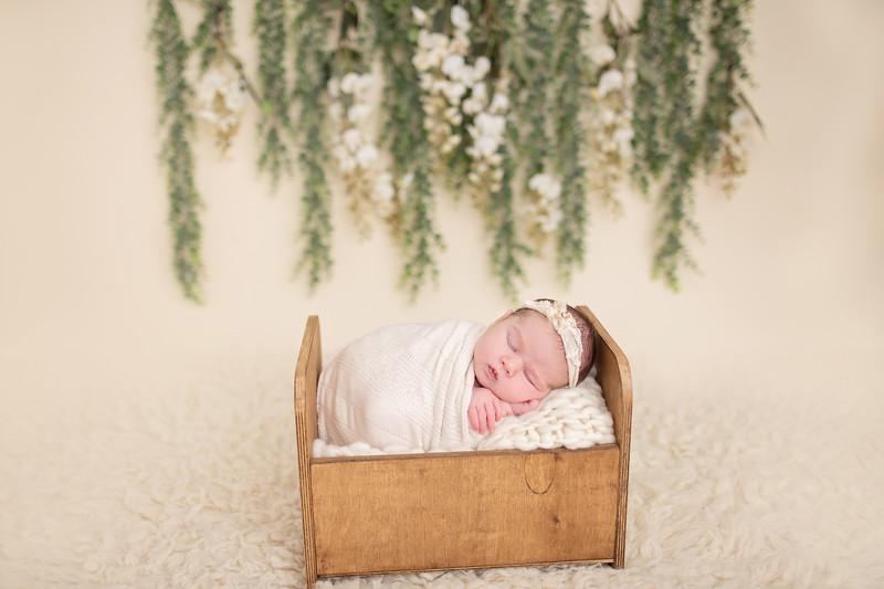 Cook Newborn-11.jpg