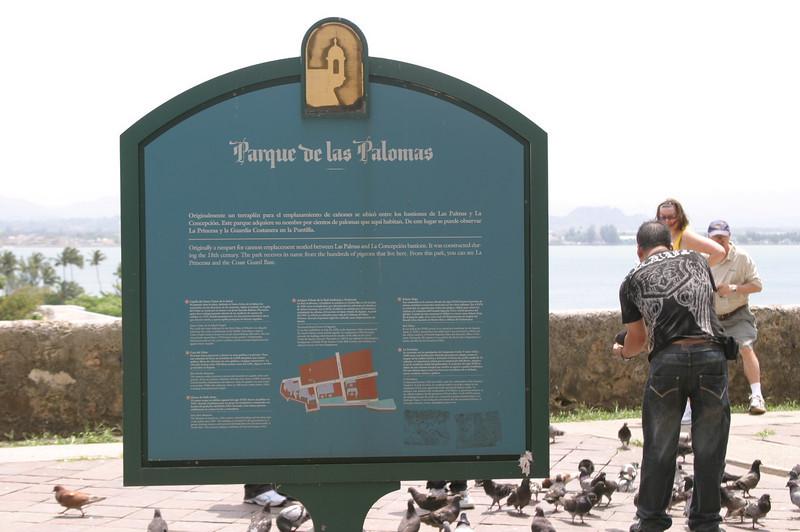 a.k.a. Pigeon Park