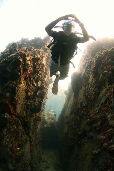 Sean Edwards - Underwater Camera/Portraiture Portfolio