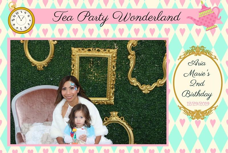 Wonderland Tea Party (76).jpg