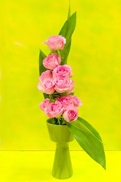 20150826 Flower Show-2205.jpg